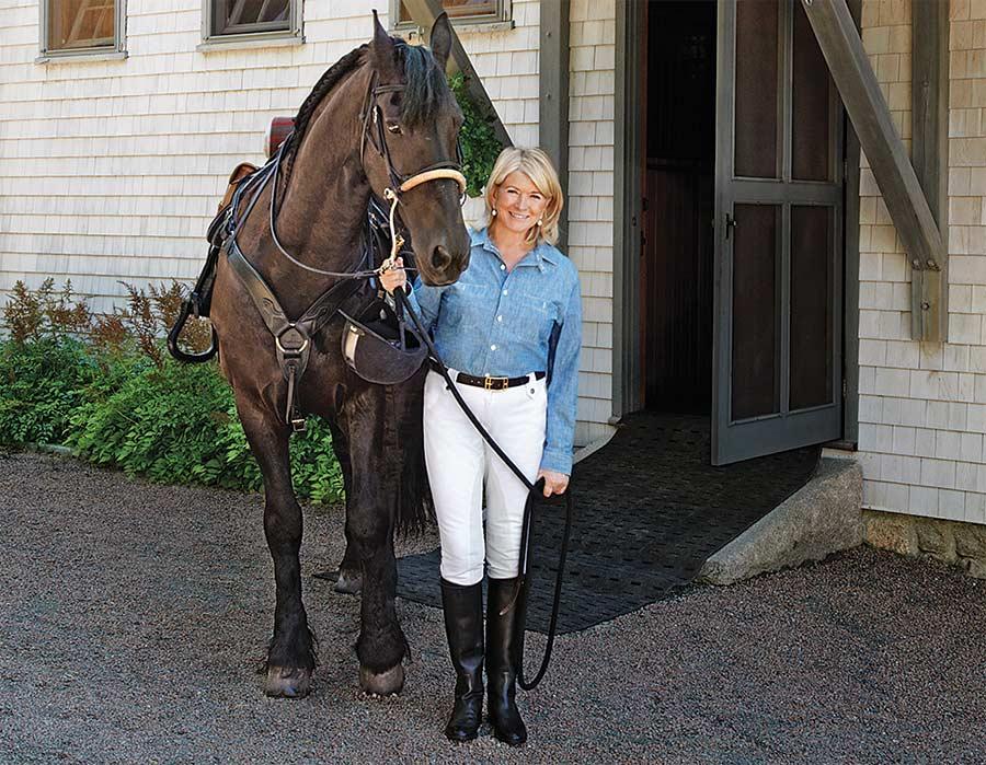 Martha Stewarts Horse Rutger.