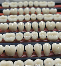 Prosthetic teeth.