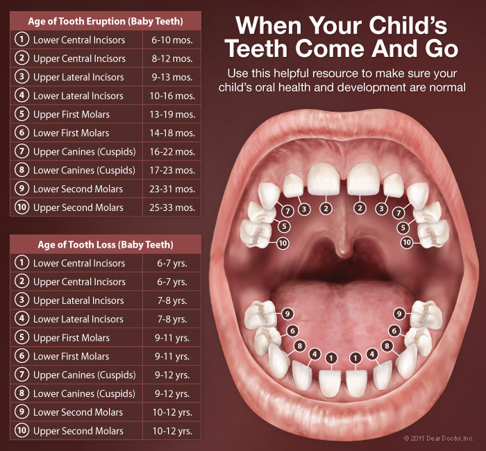 Teething Dentistry For Children Nw Eugene Or